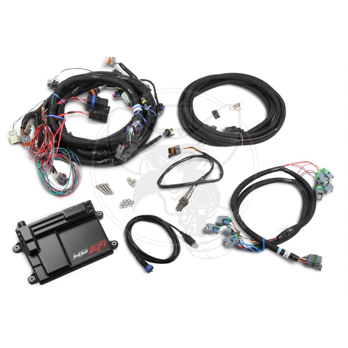Ho550 603 Holley Hp Efi Ecu Harness Kit